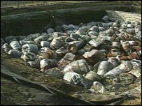 Low level waste pit
