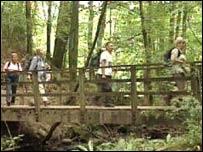 Walkers cross a bridge