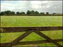 Rural view with gate