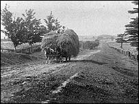 The picture is taken c 1910 and is of a hay wagon on  McCowan Road. The McCowans arrived in Toronto in 11833 with nothing but their clothes. Within 15 years they owned a farm of several hundred acres