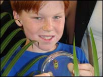 Oliver Evans with the saddleback caterpillar