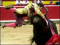 A bullfighter is gored by a bull