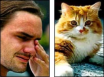 Roger Federer and a ginger cat