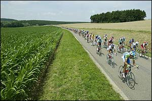 The peloton enjoys a long flat stretch of road