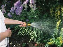 Garden being hosed