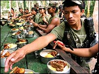FARC troops