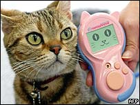 A cat sits next to the cat-language electronic interpreter Meowlingual