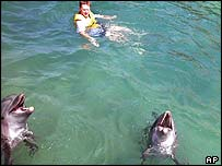 Tourist swims with dolphins at Parque Nizuc in Cancun