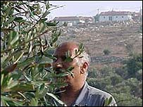 Olive farmer