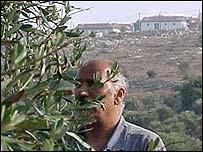 Olive farmer