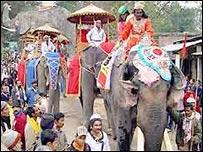 Elefantes en la India.