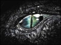 Nessie eye, BBC