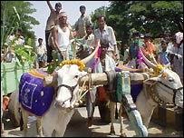 Farmers with bullocks