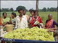 Farmers with produce