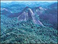 Las monta�as de Tumucumaque (Foto: gentileza Fondo Mundial para la Naturaleza)