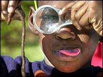 Boy with worm and magnifying glass