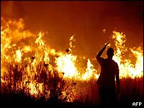 A man watches a field burn near Estremadure, Spain, on the border with Portugal