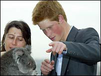 Prince Harry with a Koala