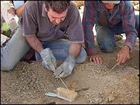 Fossil hunters, Sharon Mascall