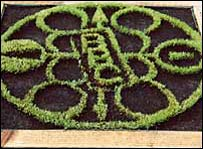 Miniature crop circle