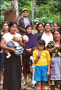 Comunidad cafetera en San Juan Bosco de Chuxnab�n, Oaxaca