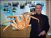 Scientist holds king crab   Alex Kirby