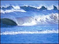 Surf. EyeWire