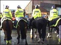 police horses generic