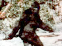 'Bigfoot' photograph taken in California