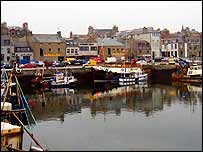 MacDuff harbour   Alex Kirby
