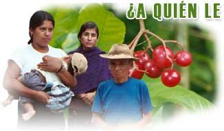 �A qui�n le importa? Responsabilidad social empresarial en Am�rica Latina.