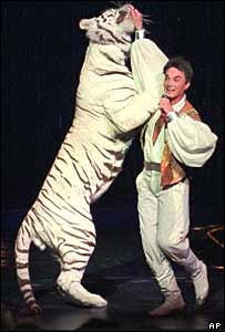Roy Horn and white tiger