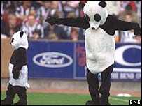 Paisley Panda and his junior colleague at St Mirren Park