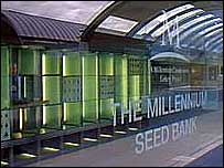 Millennium seed bank   Alex Kirby