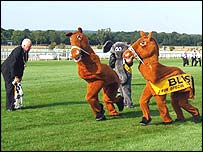 The annual Pantomime Horse Challenge at Sandown Park