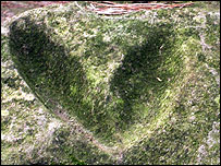 Heart-shaped marking