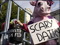 Protester dressed as pink cow