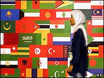 Woman passes in front of OIC flags