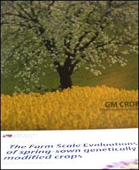 FSEs report brochure