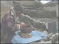 Phiri Sherpa