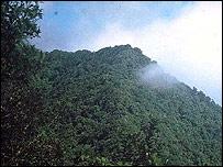 Selva del Darién.