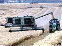 Cultivos en Estados Unidos