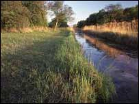Wicken Fen - Picture provided by the National Trust