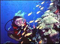 Scuba diver (AP)