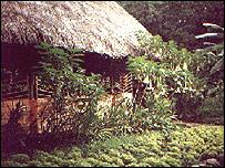 Takiwasi centre