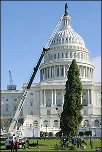 Workers erect the holiday tree outside the US Capitol Building
