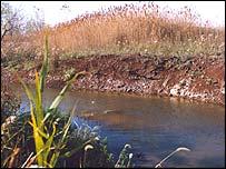Alkaline pool (Image: George Roadcap)