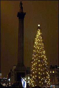The Trafalgar Square Christmas Tree 2003