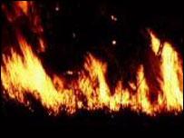 Wildfire, BBC