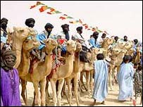 Camel races in Timbuktu